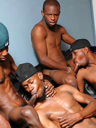 Our new crew of horny black stallions is back and things are only about to get hotter from here